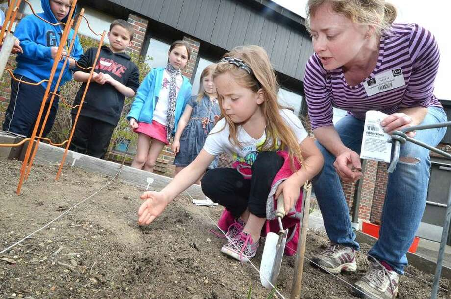 Hour Photo/Alex von Kleydorff 1st grader Sydney Farago trys using her hand instead of a trowel to plant a sweet pepper seed in the vegetable garden with help from volunteer Shannon Cruickshank during Earth Day activities in the Outdoor Learning Center at Miller Driscoll School in Wilton Tuesday