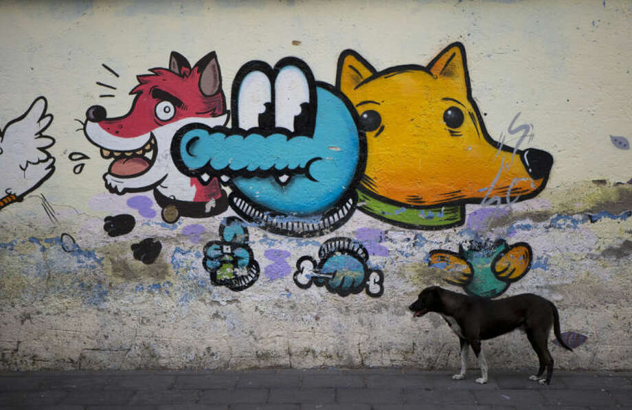 A dog stands beside street graffiti in Xochimilco, on the southern edge of Mexico City, Wednesday, May 7, 2014. In Xochimilco, busy markets stand side by side with colonial churches, and children ride to school in boats pushed by poles, along a network of canals and floating gardens that date to pre-hispanic times. The popular tourist destination was declared a UNESCO world heritage site in 1987. (AP Photo/Rebecca Blackwell)