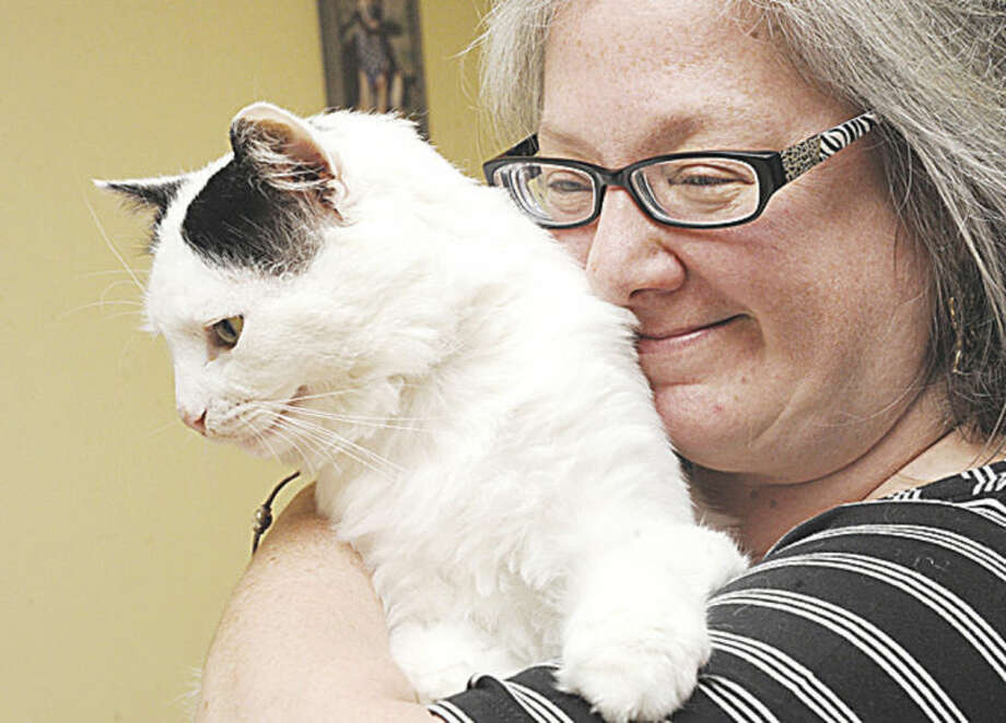 Linda Schaff, chief feline adoption coordinator at PAWS in Norwalk with Hobo the cat who is FIV positive but can live a long life asymptomatic. Hobo is one of around 100 cats up for adoption. Hour photo/Matthew Vinci