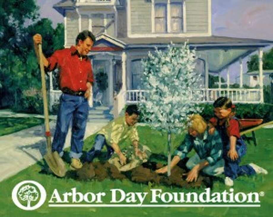 Celebrate Arbor Day in Connecticut by planting trees