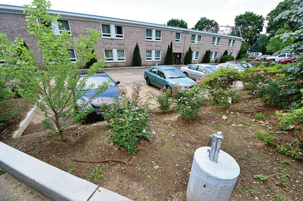 The Norwalk Inn has new trees, shrubs and other landscaping planted behind the rear parking area as buffer for neighbors. Neighbors are worried about the project and whether they will be adequately shielded from the expanding hotel on East Ave. Hour photo / Erik Trautmann