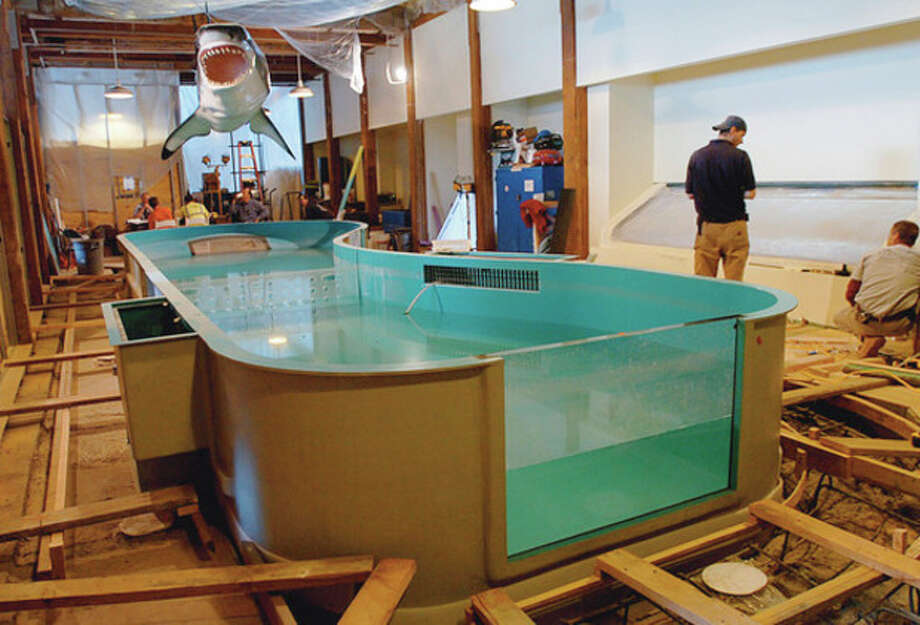 The ray and shark touch tanks at The Maritime Aquarium are being renovated. / (C)2011, The Hour Newspapers, all rights reserved