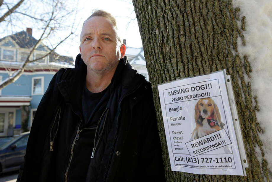 Author Dennis Lehane stands next to a poster for his missing dog in Brookline, Mass., Thursday, Jan. 3, 2013. The dog, a beagle named Tessa, went missing on Christmas Eve 2012. (AP Photo/Steven Senne) / AP