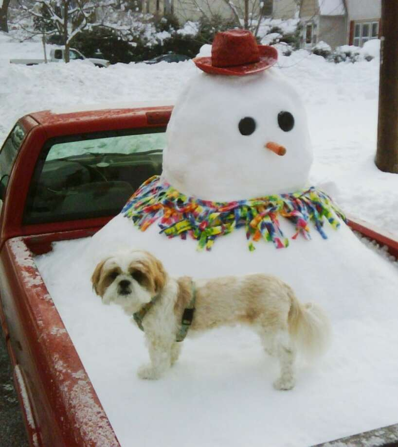 Reader photo: Snowman and the truck