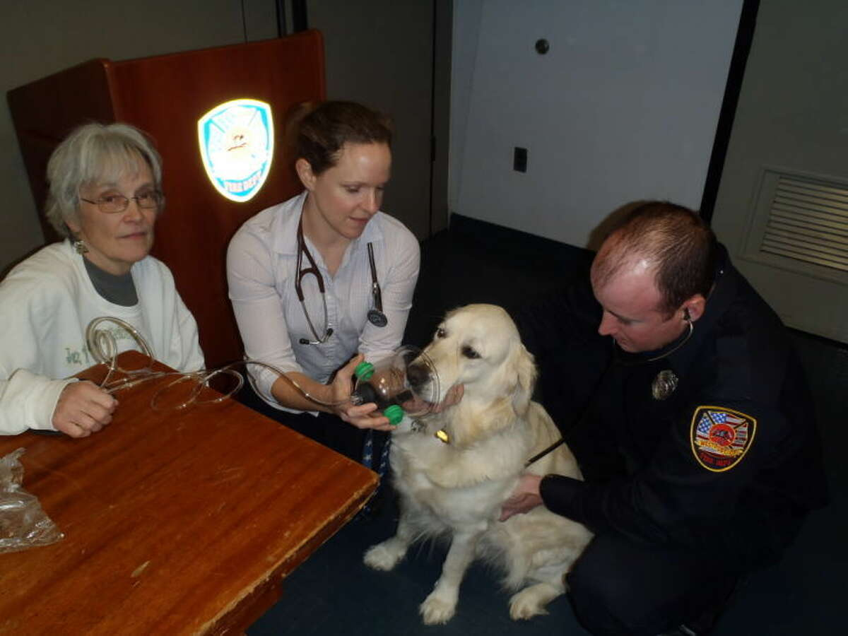 Westport fire personnel trained in use of pet oxygen masks.
