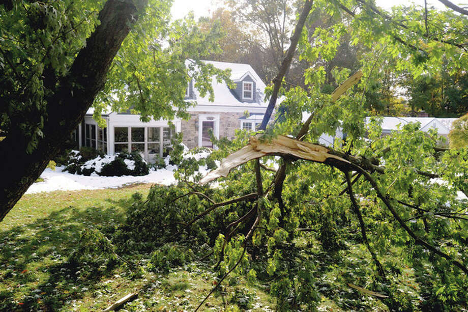 Tree branches down at a home on Pepper Ridge road was the scene all around the Stamford area Monday following the weekend storm. photo/Matthew vinci / (C)2011, The Hour Newspapers, all rights reserved