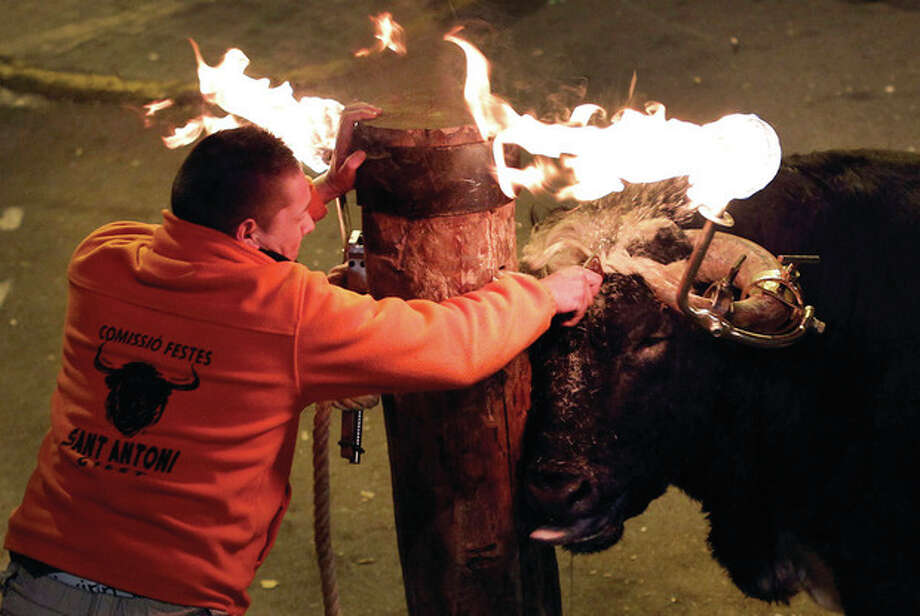 AP photo A reveler releases a bull with flaming horns during a festival in honor of Saint Anthony, the patron saint of animals, in the streets of Gilet, a town near Valencia, Spain. / AP2012
