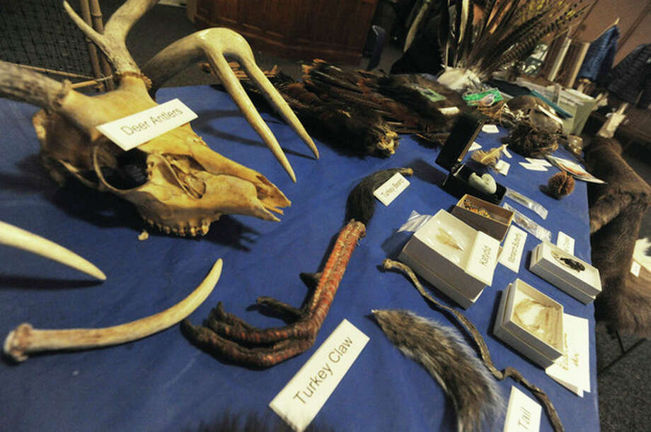 Hour photo / Matthew vinci Above, items on display Monday at the annual Land Trust meeting in the Norwalk City Hall community room represent wildlife in the area