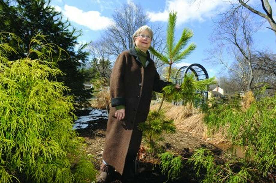 Westport resident Pamela Weil in one of her backyard gardens. This is her all season garden where many conifers grow. hour photo/matthew vinci