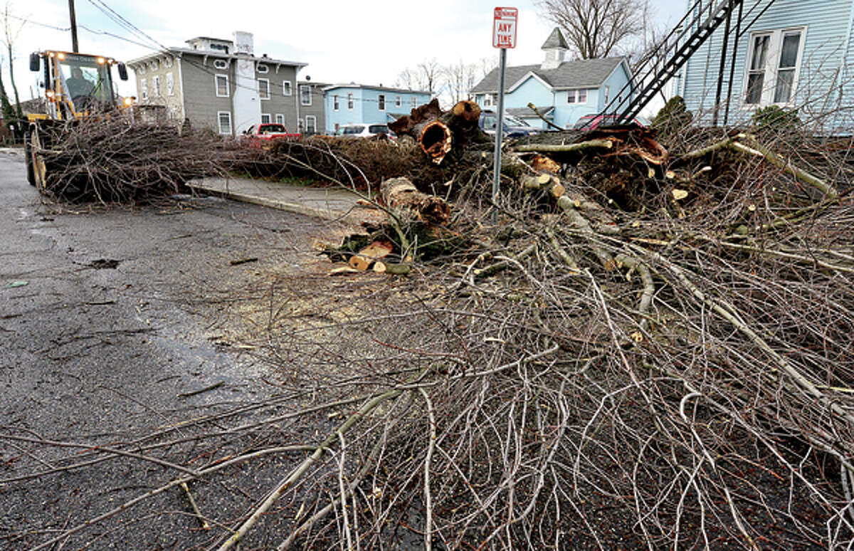 Heavy winds associated with a storm that effected the area early Thursday morning brought down wires and trees throughout Norwalk including a large oak on High St. Hour photo / Erik Trautmann