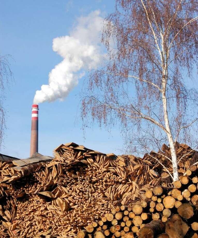 EarthTalk: Biomass