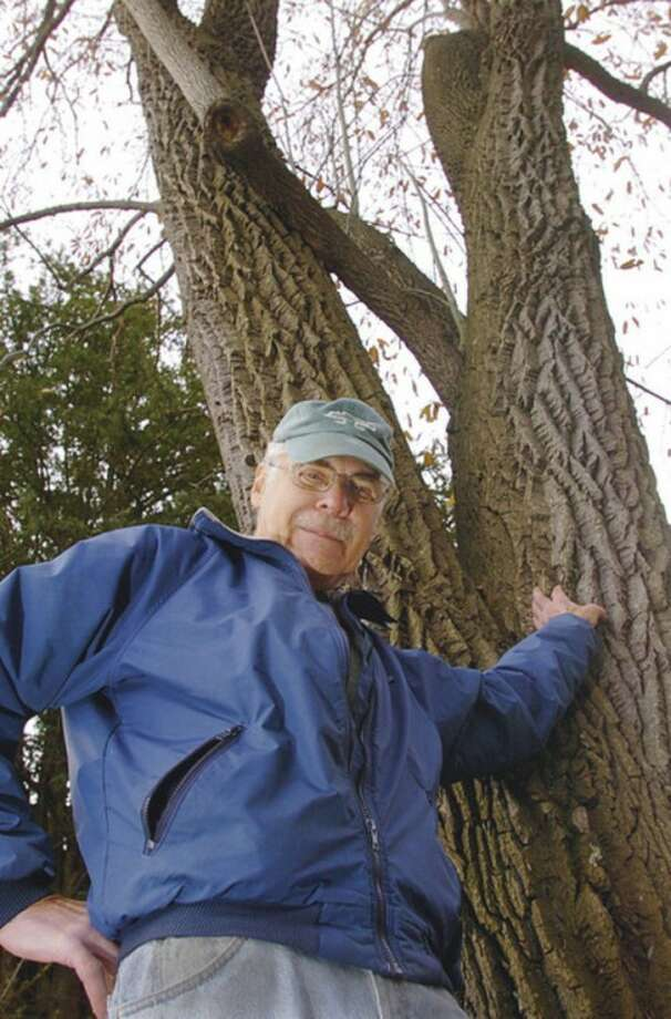 Hour photo / Erik Trautmann Dan Landau, president of the Norwalk Tree Alliance, stands next to the largest Sour Gum tree in Connecticut, which the alliance helped put on its state registry of trees.