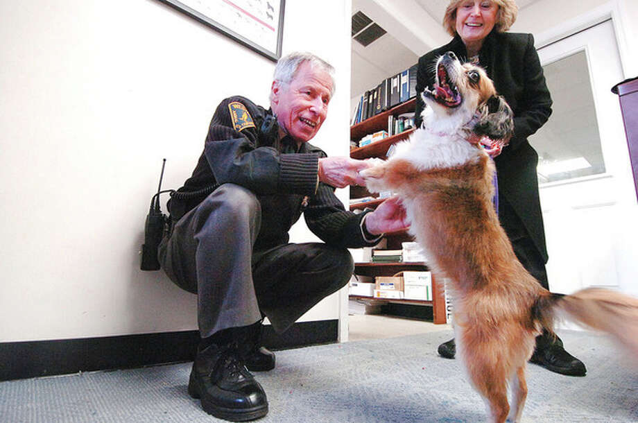Hour photos / Alex von Kleydorff Above, Animal Control Officer Peter D'Amico plays with Pepper, a 3-year-old Pomeranian mix, before her daily walk with volunteer Gennann Barile at the Westport Animal Shelter Tuesday. Below, Kathleen Suchy, animal control secretary, gets a kiss from Loretta as the dogs come in from their afternoon walks. / © 2012 The Hour Newspapers