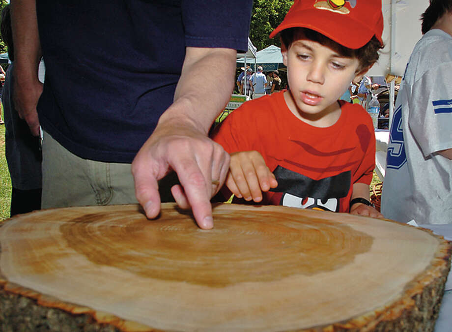 Jay Babina counts tree rings with his dad at the Norwalk-Wilton Tree Festival Saturday in Cranbury Park. Hour photo / Erik Trautmann / (C)2012, The Hour Newspapers, all rights reserved