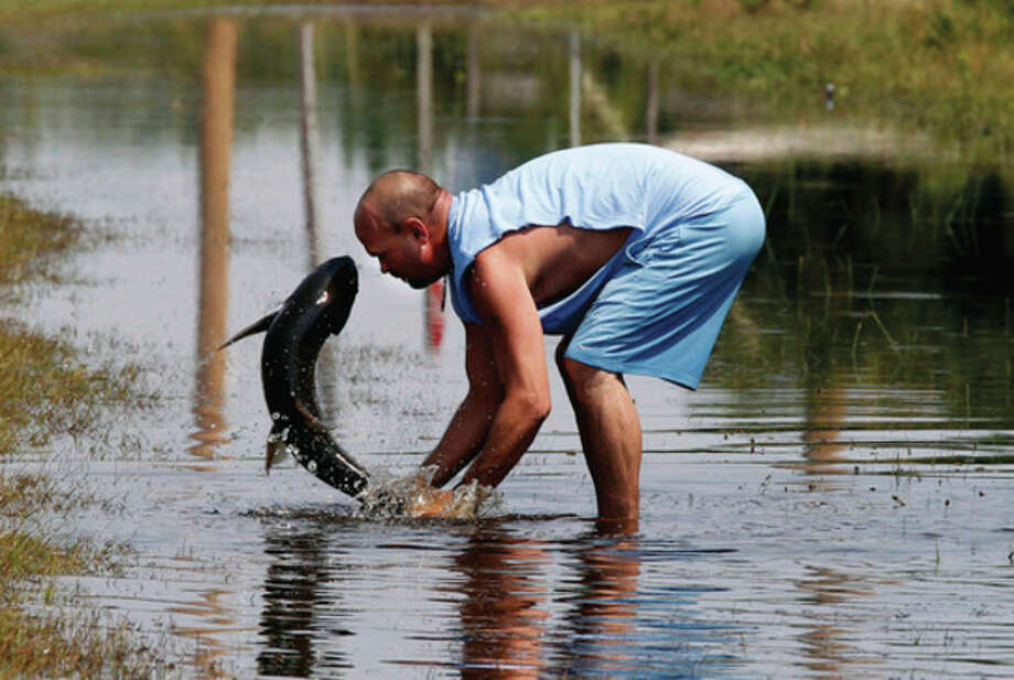 Greg Austin of Avon, N.C. tries to save a large fish that was washed out of a local pond during the storm surge from Hurricane Irene, in Avon, N.C., Monday, Aug. 29, 2011. Avon is one of the Hatteras Island communities cut off due to breaches in N.C. Highway 12 caused by Hurricane Irene. (AP Photo/The News & Observer, Chuck Liddy) / 2011 The News & Observer