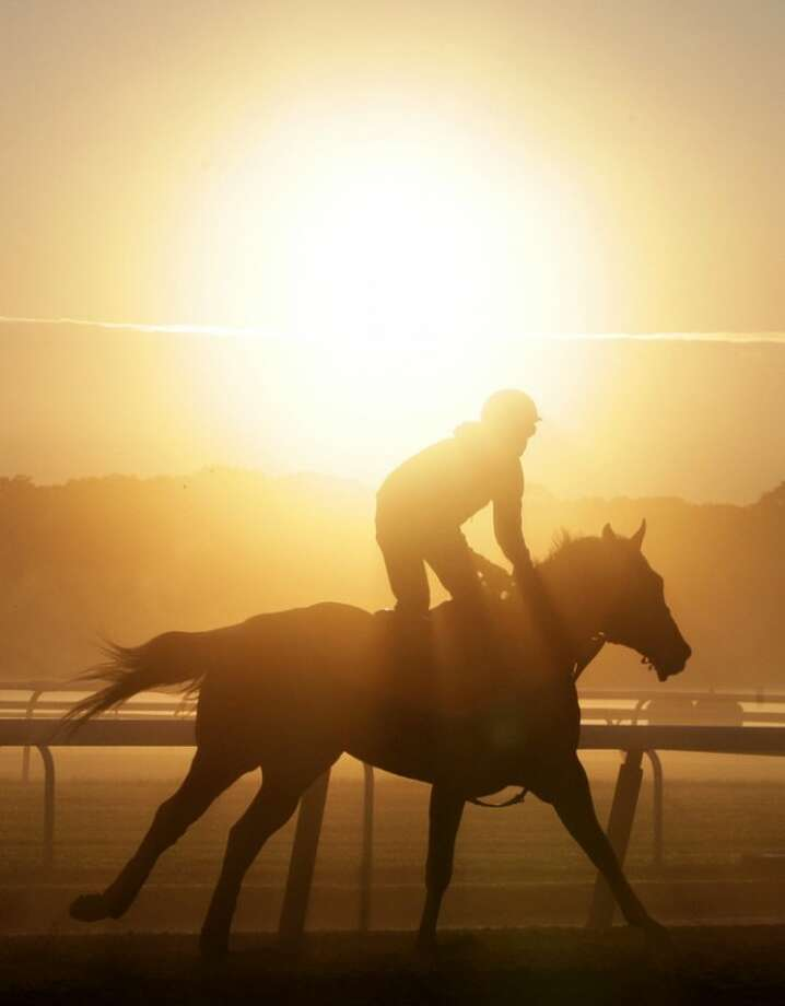 A horse trains at Belmont Park, Wednesday, June 6, 2012 in Elmont, N.Y. The Belmont Stakes horse race is Saturday. (AP Photo/Mark Lennihan)