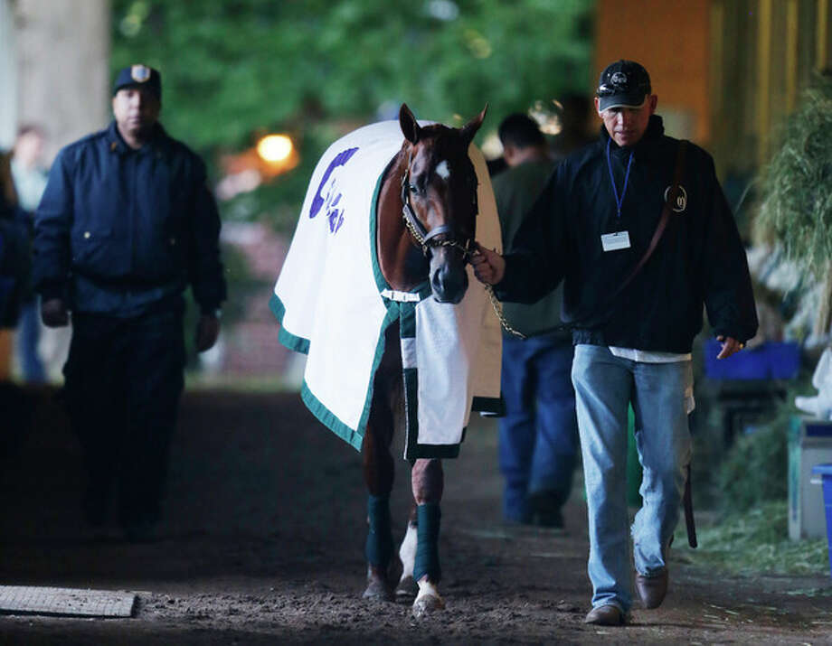 I'll Have Another walks in the barn with groom Benjamin Perez after a morning workout at Belmont Park, Friday, June 8, 2012 in Elmont, N.Y. The Triple Crown hopeful runs Saturday in the Belmont Stakes. (AP Photo/Mark Lennihan) / AP
