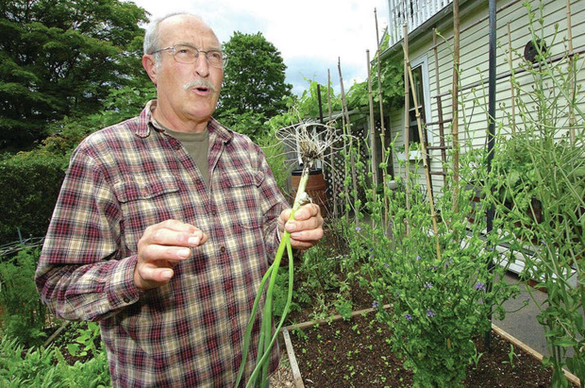 Hour photo / Alex von Kleydorff Nick Mancini holds some third-year garlic bulbs just picked from his organic garden recently.