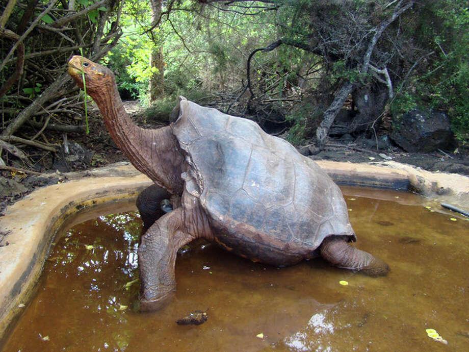 / Galapagos National Park