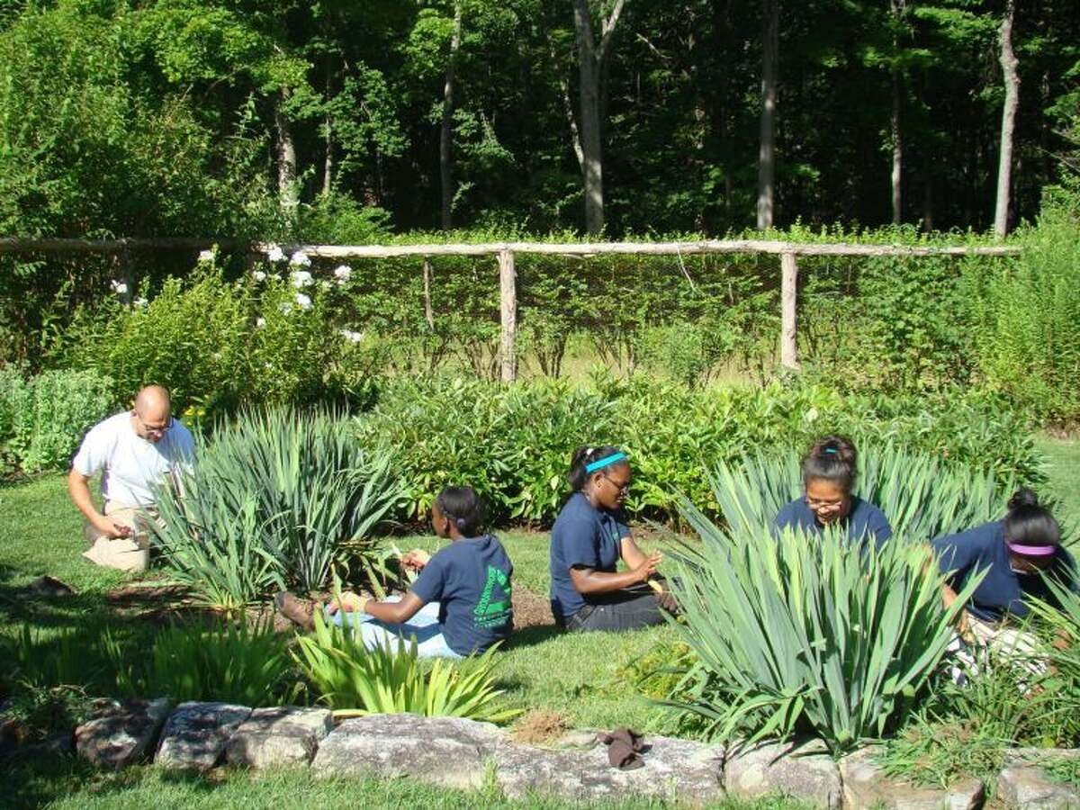 """Join the """"Garden Gang"""" and enjoy time outdoors maintaining Weir Farm National Historic Site's historic gardens."""