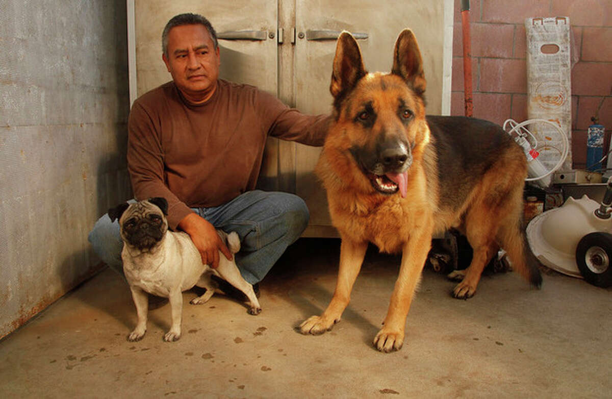 This Wednesday, Nov. 16, 2011 photo shows Luis Calderon with his German shepherd, Buddy, right, and his wife's dog Lola, left, in El Monte, Calif. Calderon, a self-employed handyman, has a wife and two kids and says work is scarce. If Buddy needed a vet, Calderon says he would have to go through public services or use credit. (AP Photo/Damian Dovarganes)