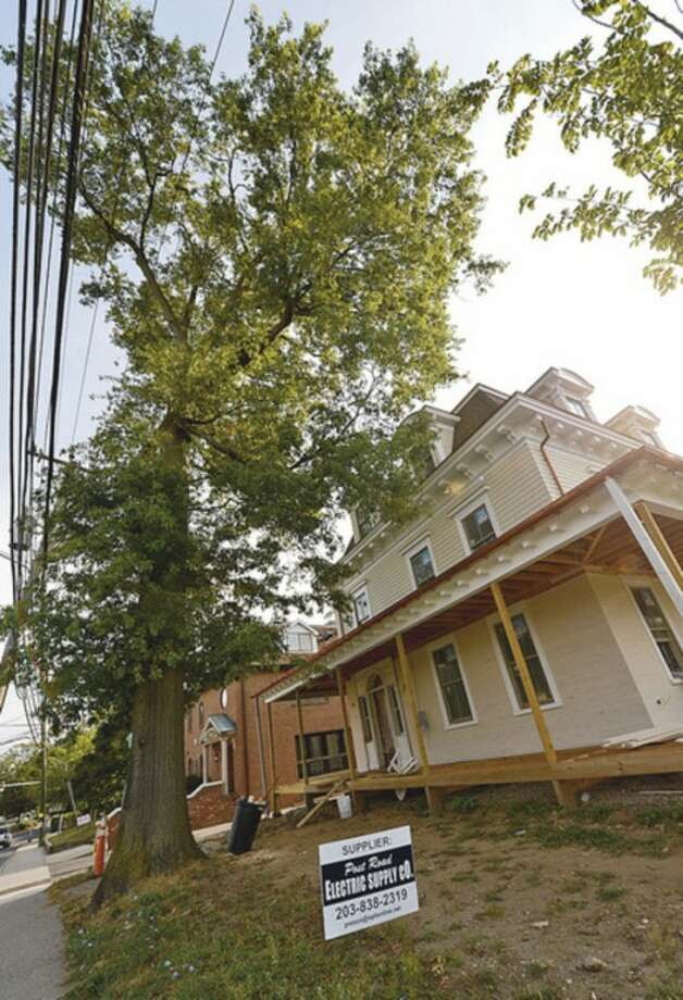 The Norwalk Inn and Conference Center is looking to remove a towering oak tree from outside the newly renovated Grumman-St. John House.Hour photo / Erik Trautmann