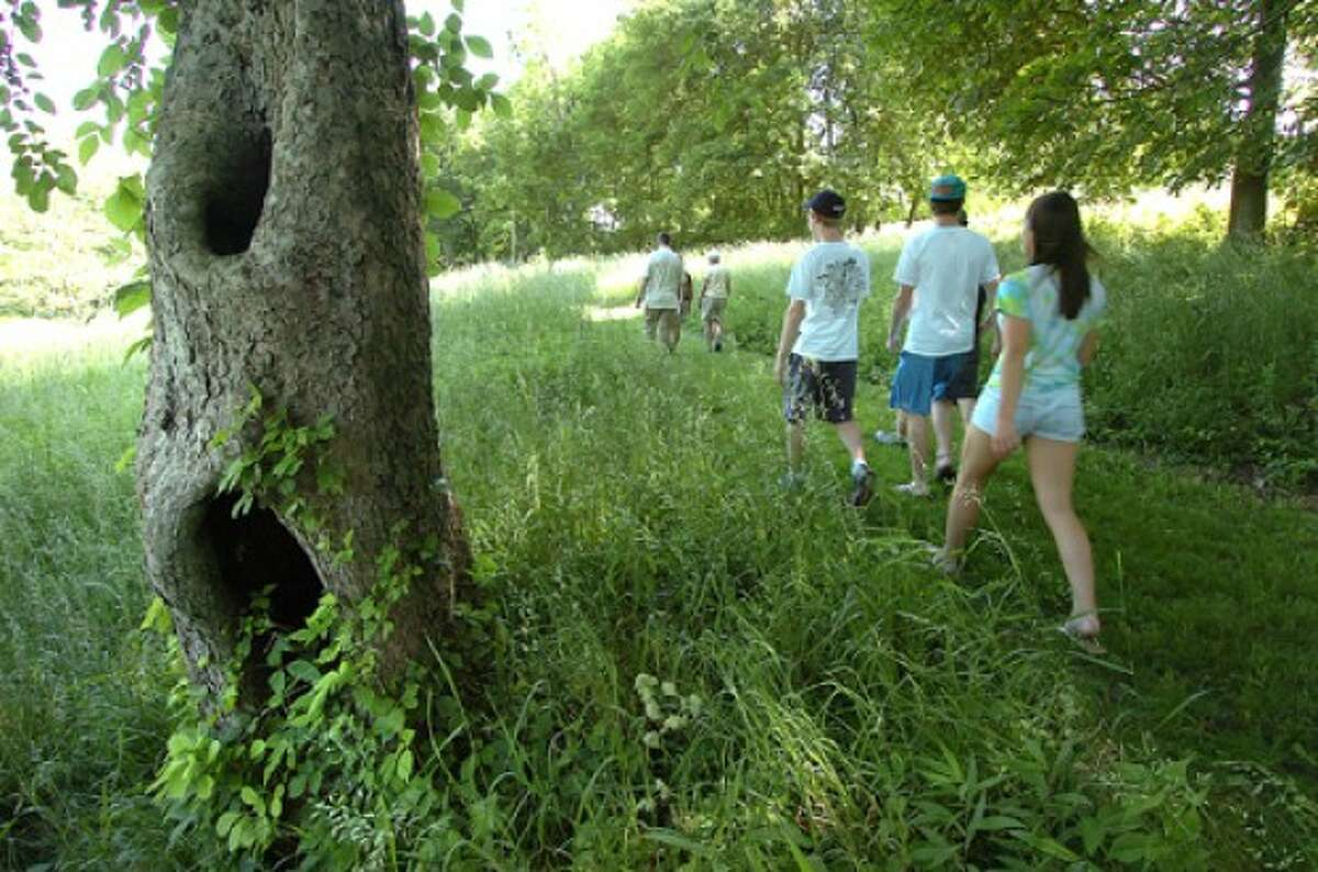 Photo by Alex von Kleydorff. Taylor Gillespie, Hunter Logan, George Copley and Alex Mirabile follow a path trough Quarry Head Harrrison Smith Preserve to check on the apple tree planted in a field in rememberance of friend Nick Parisot