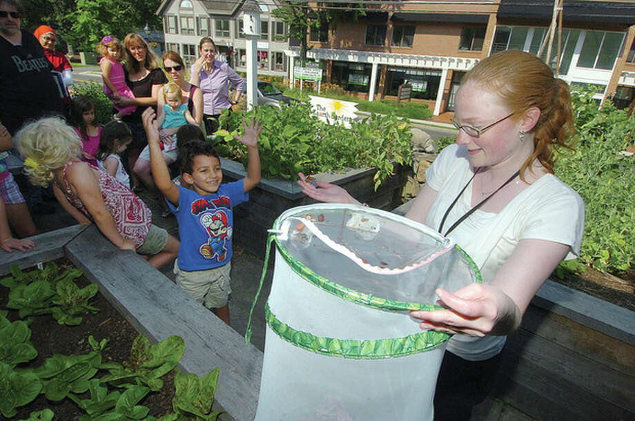 Hour photo / Alex von KleydorffAndrea Falkner, head of the Childrens Library at Wilton Library, sets free eight Painted Lady Butterflies into the wild. / 2012 The Hour Newspapers