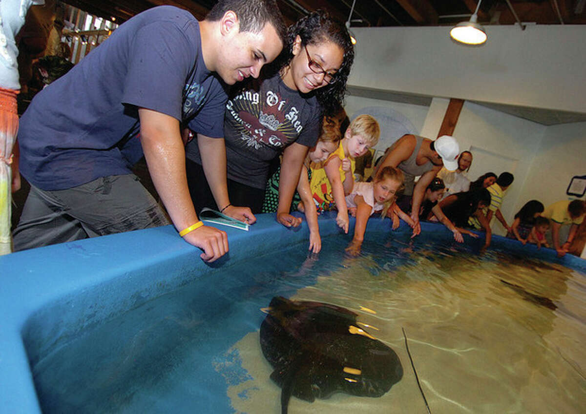 Hour Photo / Alex von Kleydorff Andres Burmudez and Claudia Perez from Stamford spend a moment at the sting ray touch tank at The Maritime Aquarium on Sunday.