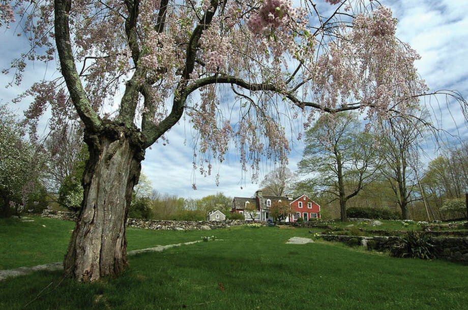 Hour photo/ Alex von Kleydorff A Weeping Cherry tree frames the Visitors Center at Weir Farm National Historic Site.