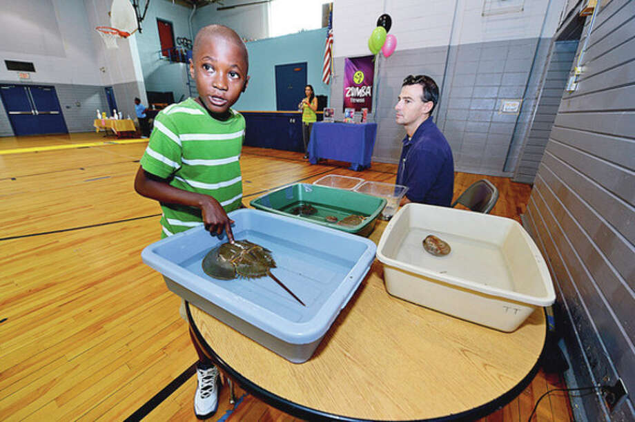 Djouly Wolfe, 10, enjoys the Martime Aquarium's touch tank during the Community Health Fair at Nathaniel Ely School Saturday. / (C)2012, The Hour Newspapers, all rights reserved