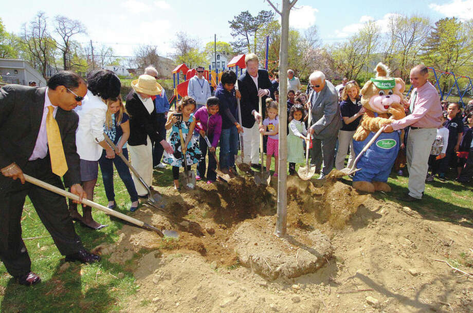 Hour Photo/Alex von Kleydorff All together to plant a tree during Arbor Day at Jefferson Science Magnet School / 2013 The Hour Newspapers