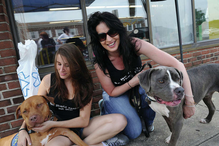 Hour photos / Matthew VinciVolunteers Cariann Tyszka and Rachel Pagliarulo snuggle with Smootch and Doze, pit bull dogs up for adoption Sunday at My Three Sons in Norwalk. Strawberry Hill Animal Hospital gave out free exams to any dogs adopted at the event.
