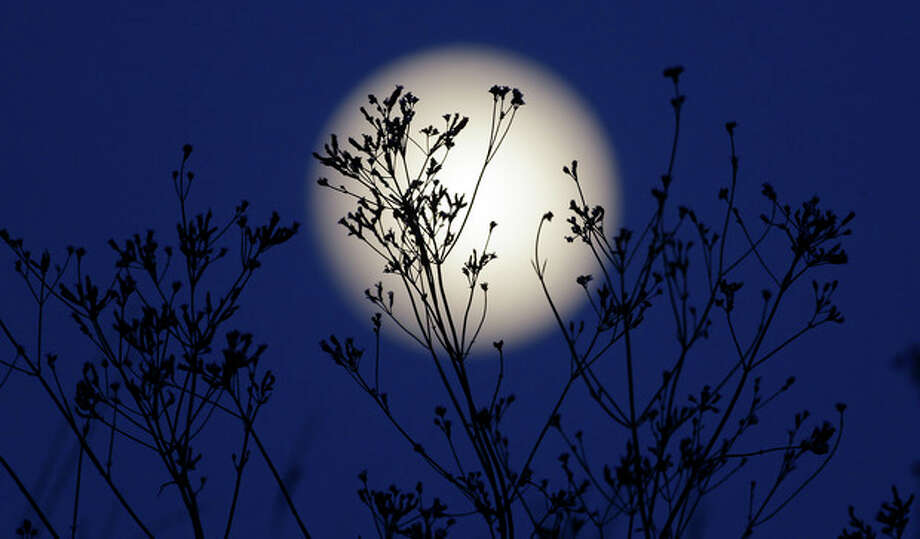 """A """"supermoon"""" rises behind roadside plants growing in Prattville, Ala., Saturday, June 22, 2013. The biggest and brightest full moon of the year graces the sky early Sunday as our celestial neighbor swings closer to Earth than usual. While the moon will appear 14 percent larger than normal, sky watchers won't be able to notice the difference with the naked eye. Still, astronomers say it's worth looking up and appreciating the cosmos. (AP Photo/Dave Martin) / AP"""