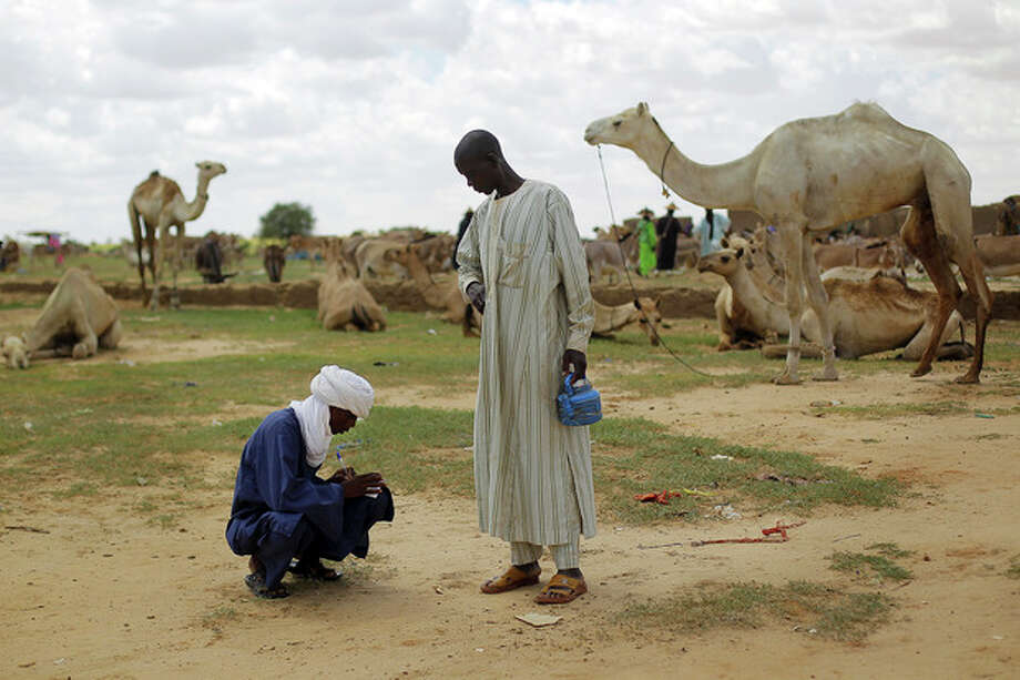 In this picture taken Tuesday July 17, 2012, A Nigerian taxman records the sale of a camel at the market in Bermo, Niger, 200 kms (125 miles) north of Maradi. This is a region where it is in livestock that a man settles disputes, pays the dowry for his future bride and leaves inheritance to his sons. For generations, nomads have lived in a precarious equilibrium with the sky above them. When the first rains come, they head north toward the Sahara desert, where the grass is said to be saltier, packed with minerals. They time their movements according to the clouds, waiting for the second major downpour, before making a U-turn to head back to the greener south. (AP Photo/Jerome Delay) / AP