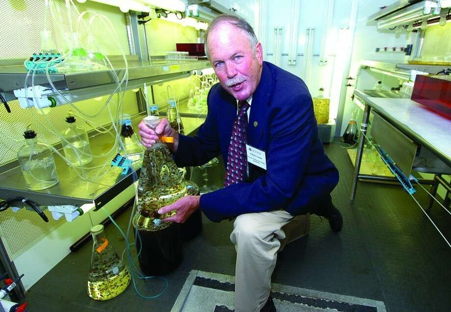 Hour Photo/ Alex von Kleydorff. Professor of Ecology and Evolutionary Biology and Marine Sciences at UConn Stamford, Charles Yarish Ph.D., with some of the seed stock for kelp, grown in the school's laboratory.