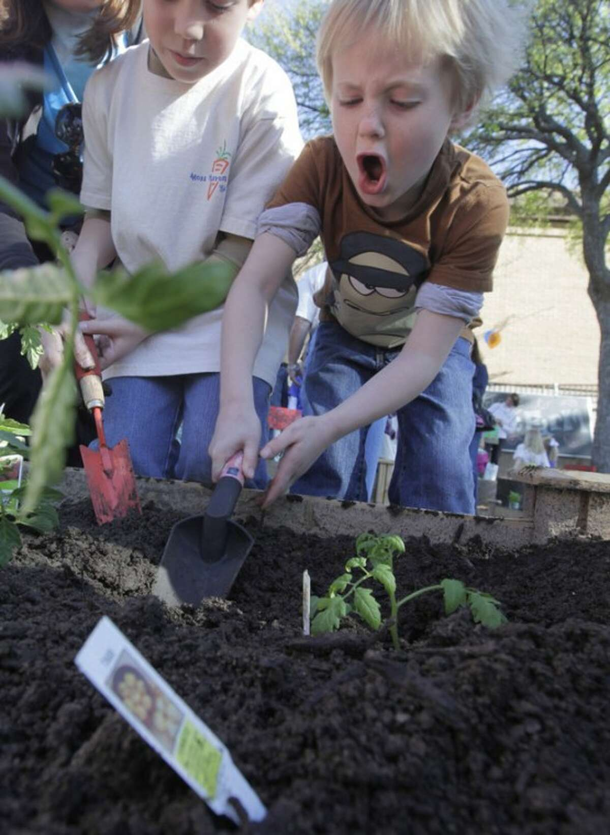 In this photo taken on March 27, 2012, elementary students plant vegetables in a garden at Moss Haven Elementary school in Dallas, T.X. Gardens planted in schoolyards nationally are intended to encourage healthier eating, and also teach young students about the environment, science, teamwork, math and leadership. (AP Photo/LM Otero)