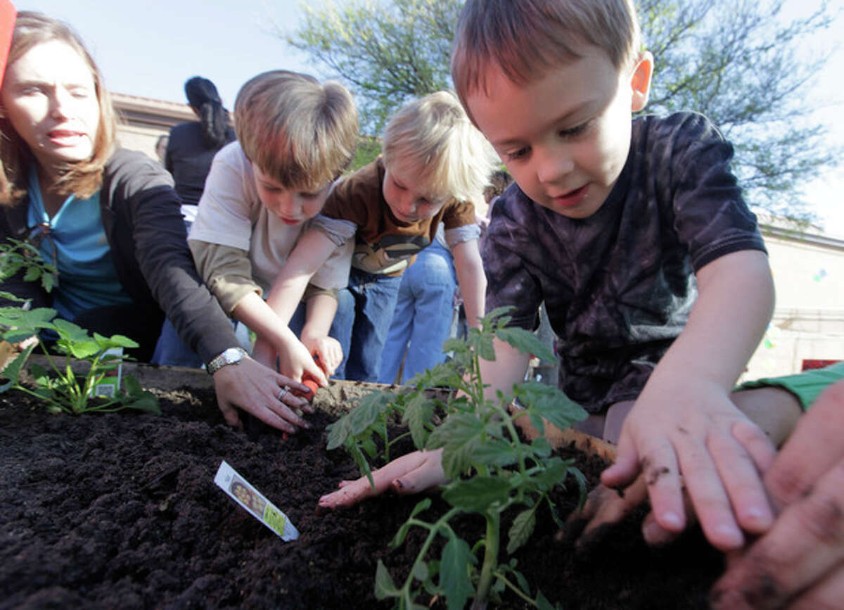 In this photo taken on March 27, 2012, kindergartner Ryan Crawford, 5, right, plants vegetables with fellow students at Moss Haven Elementary school in Dallas, T.X. Gardens planted in schoolyards nationally are intended to encourage healthier eating, and also teach young students about the environment, science, teamwork, math and leadership. (AP Photo/LM Otero)