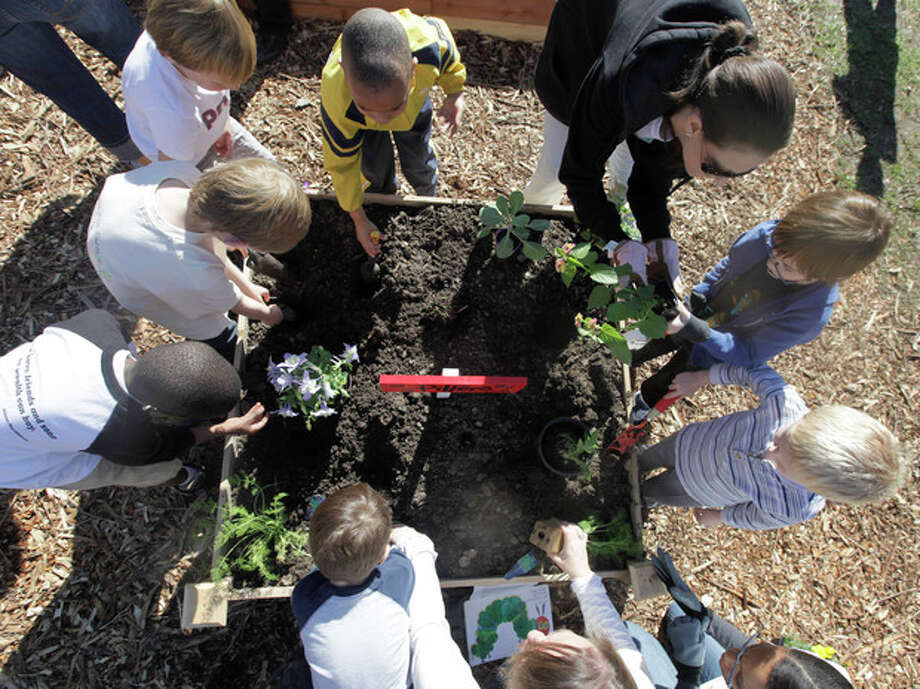 AP Photo/LM OteroIn this photo taken on March 27, kindergartners at Moss Haven Elementary school work in a student garden in Dallas, T.X. Gardens planted in schoolyards nationally are intended to encourage healthier eating, and also teach young students about the environment, science, teamwork, math and leadership. / AP