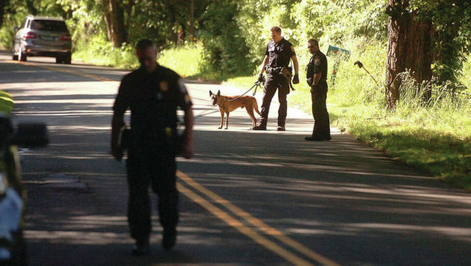 Hour Photo/Alex von Kleydorff. Westport police use a K9 to track a suspect along Sturges Highway in Westport on Thursday afternoon / 2013 The Hour Newspapers