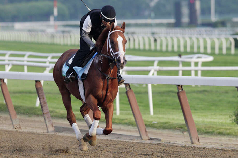 Midnight Taboo gallops on the track at Belmont Park during a morning workout Thursday, June 6, 2013 in Elmont, N.Y. Midnight Taboo is entered in Saturday's Belmont Stakes horse race. (AP Photo/Mark Lennihan) / AP