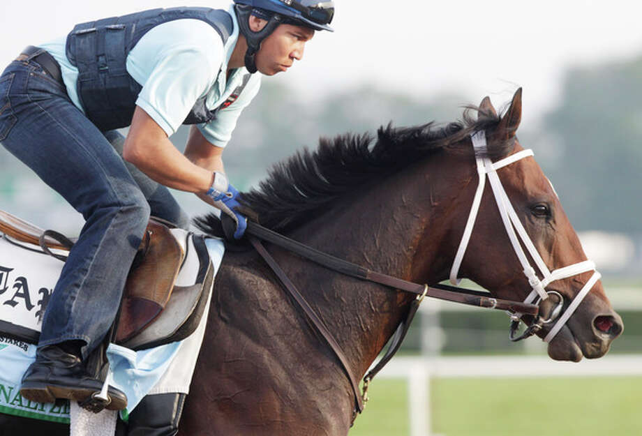 Overanalyze gallops on the track at Belmont Park during a morning workout Thursday, June 6, 2013 in Elmont, N.Y. Overanalyze is entered in Saturday's Belmont Stakes horse race. (AP Photo/Mark Lennihan) / AP