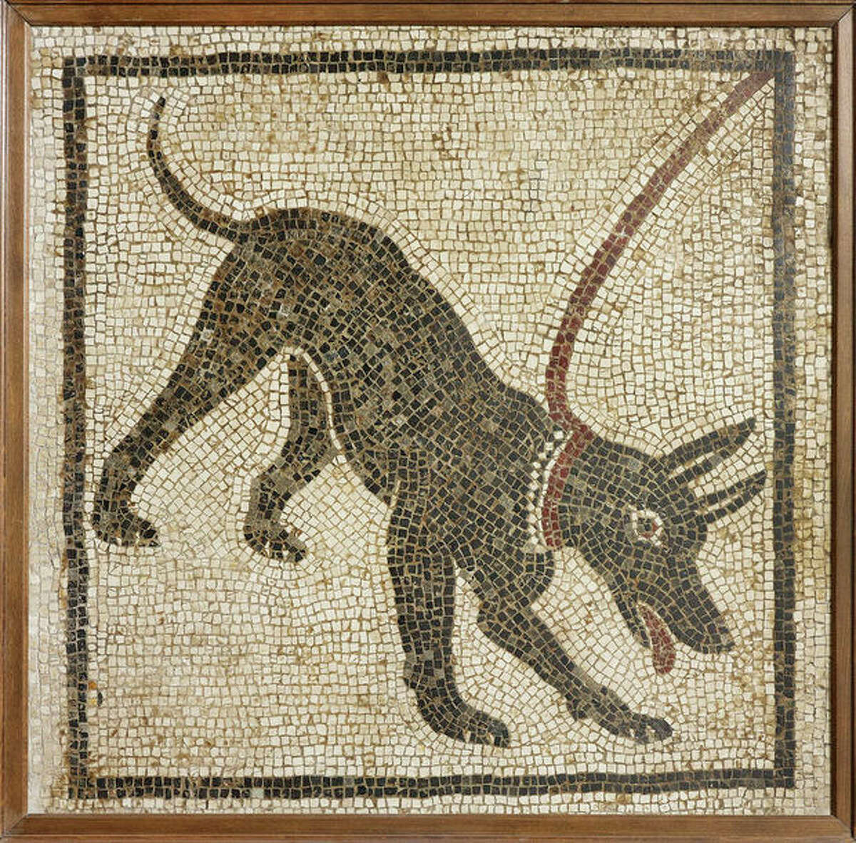 Undated handout photo issued by the British Musuem Thursday Sept. 20, 2012 of a mosaic of a guard dog from the House of Orpheus, Pompeii, 1st century AD, Italy as dozens of objects recovered from the ruins of Roman cities Pompeii and Herculaneum will go on show outside Italy for the first time at a new exhibition at the museum. The two cities on the Bay of Naples were wiped out by the eruption of Mount Vesuvius in 79 AD. The show will feature objects found in their ruins including jewellery, carbonised food and a baby?'s crib that still rocks on its curved runners. The exhibition will run March 28 to Sept. 29, 2013. (AP Photo/The Trustees of the British Museum)