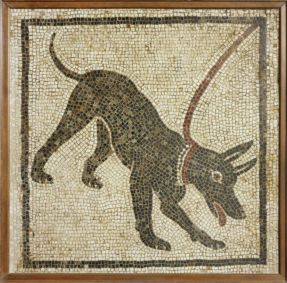 Undated handout photo issued by the British Musuem Thursday Sept. 20, 2012 of a mosaic of a guard dog from the House of Orpheus, Pompeii, 1st century AD, Italy as dozens of objects recovered from the ruins of Roman cities Pompeii and Herculaneum will go on show outside Italy for the first time at a new exhibition at the museum. The two cities on the Bay of Naples were wiped out by the eruption of Mount Vesuvius in 79 AD. The show will feature objects found in their ruins including jewellery, carbonised food and a baby's crib that still rocks on its curved runners. The exhibition will run March 28 to Sept. 29, 2013. (AP Photo/The Trustees of the British Museum) / British Museum