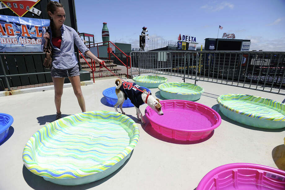Caroline Boggs and her dog Copper check out water pools during the Atlanta Braves Bark in the Park event, where fans can bring their dogs to watch the baseball game against the New York Mets at Turner Field, Sunday, May 5, 2013, in Atlanta. (AP Photo/David Tulis) / FR170493 AP