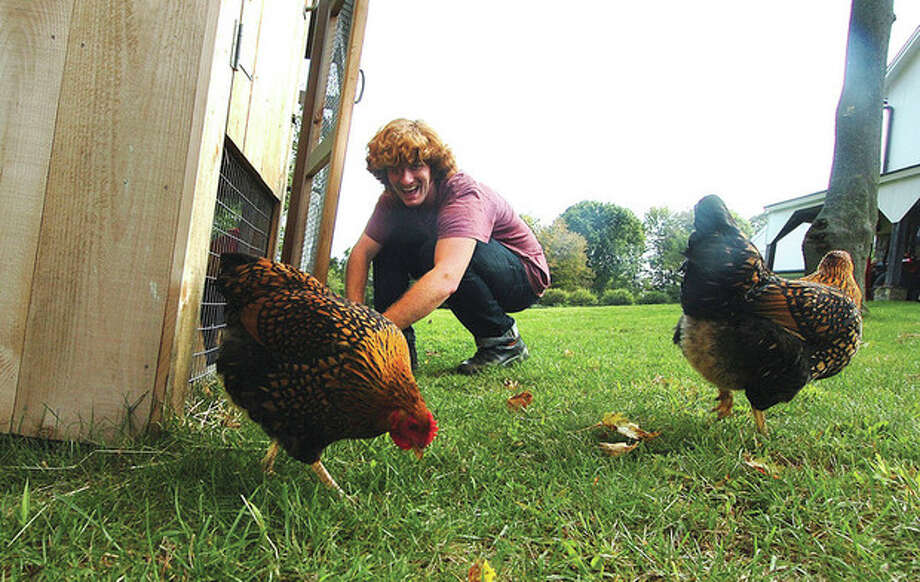 Photo by Alex von KleydorffMatt Campbell, a member of Vasudo, lets the chickens out of the chicken coop at his Wilton home. / 2012 The Hour Newspapers