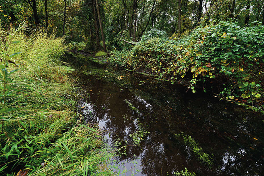A stream in the wetlands behind Burlington Court in Norwalk. Flooding in neighborhoods north of Newtown Turnpike in the Assisi Way neighborhood in Norwalk has troubled neighbors and vexed city officials. Hour photo / Erik Trautmann / (C)2012, The Hour Newspapers, all rights reserved