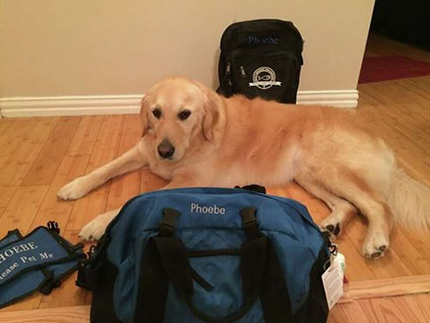 Phoebe was packed up and ready to go to Orlando on Tuesday morning.