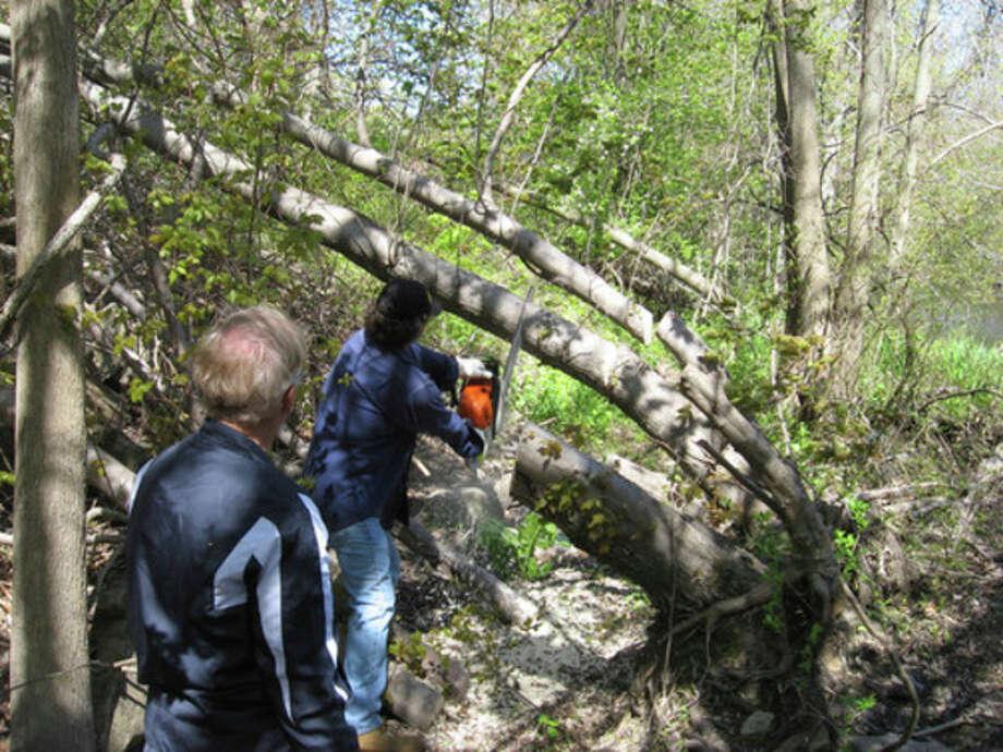 Photo by David Park Norwalk River Valley Trail volunteers blaze a trail in Norwalk.
