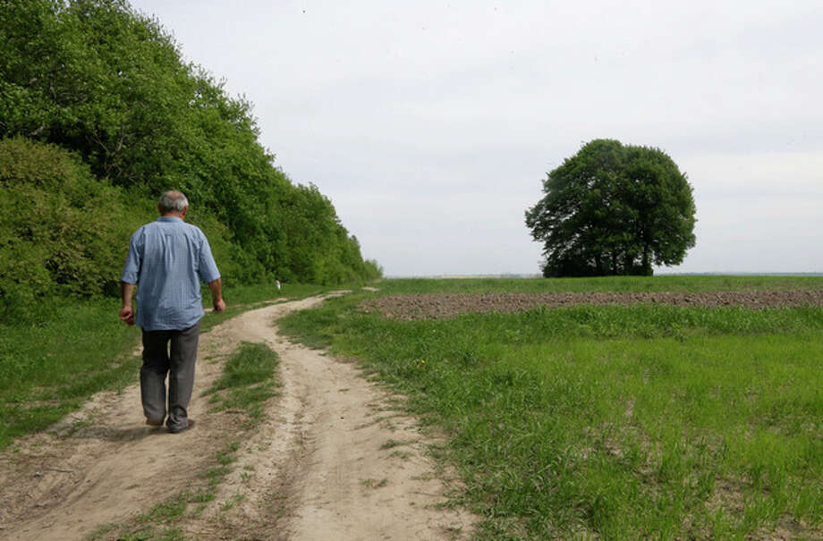In this picture taken May 10, 2013, Ivan Hrushka, 69, approaches the site of a peasant house - under trees in the distance on the right - where 21 people, including nine children were burned alive on Dec.3, 1943, in his home village of Pidhaitsi close to Ukraine's western city of Lutsk. Evidence uncovered by AP indicates that Ukrainian Self Defense Legion commander Michael Karkoc's unit was in the area at the time of the massacre of civilians . There is no indication any other units were in the area at the time. (AP Photo/Efrem Lukatsky) / AP